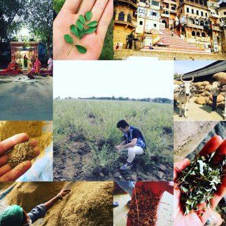 越谷市で天然ヘナのハナヘナ